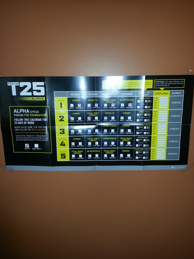 The Shakeology and T25 Experiment (4/4)
